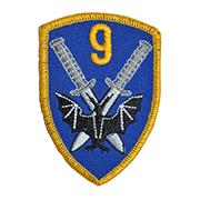 9 pułk rozpoznawczy